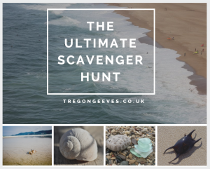 beach scavenger hunt